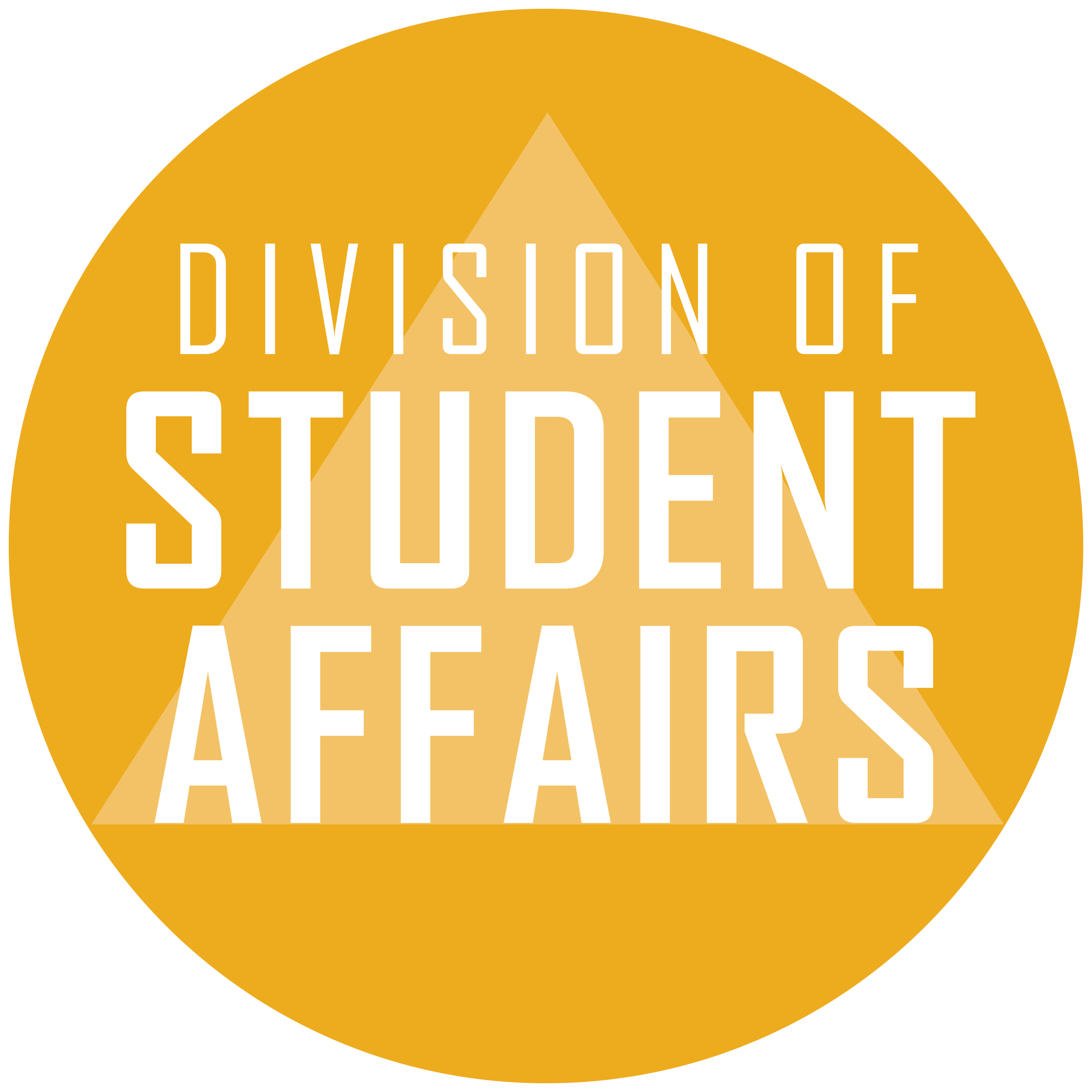Division of Student Affairs text within a gold circle with a background of a triangle/pyramid.