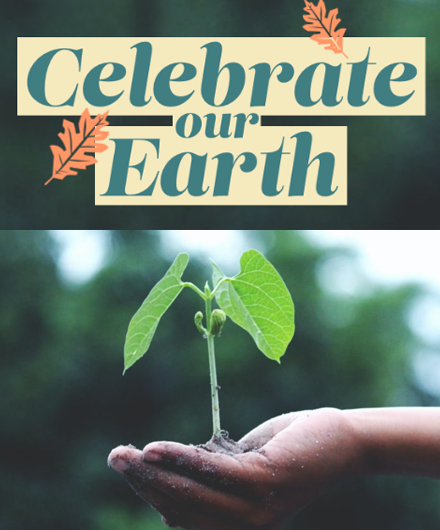 A young plant held in the palm of a hand with the headline Celebrate our Earth.