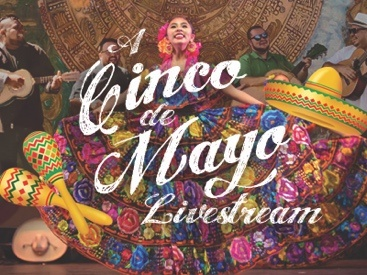 A Cinco de Mayo Livestream